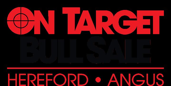 On Target Bull Sale